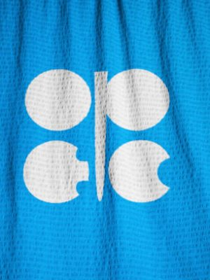 Closeup of Ruffled Organization of the Petroleum Exporting Countries Flag, OPEC Flag Blowing in Wind